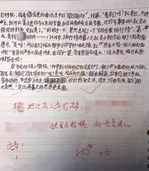 杭州求是小学韦美同学的作文