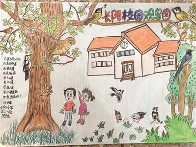 杭州少年宫举办手绘校园观鸟图大赛