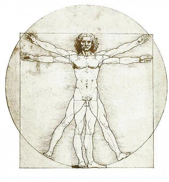 达芬奇的《黄金比例》草图